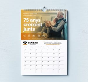 <span>Calendari de paret Assegurances Piñero</span><i>→</i>
