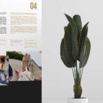 Disseny de roll-up per a exposició - agencia disseny grafic